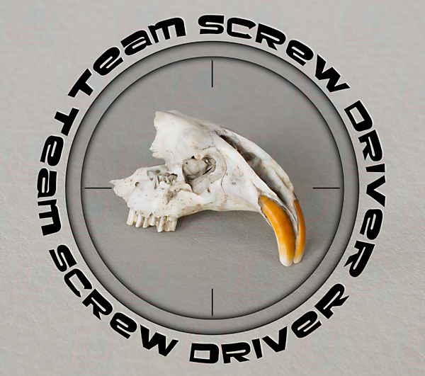 Team Screw Driver